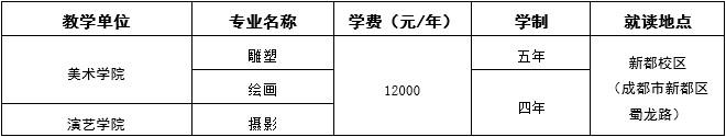 四川音乐学院2019年本科招生简章(四川省外)